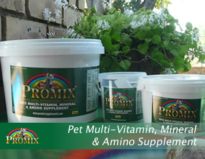 Pet Multi-Vitamin, Mineral and Amino Supplement
