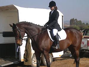 Tutwa - 11yo TB mare - before Promix